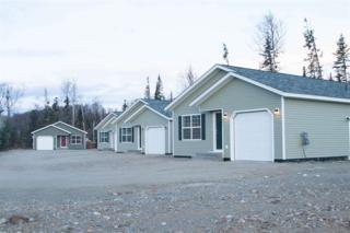 NHN Tanada Road, North Pole, AK 99705 (MLS #133534) :: Madden Real Estate