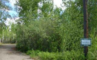 NHN Johnson Road, Salcha, AK 99714 (MLS #133596) :: Madden Real Estate