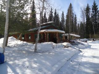 1357 Brock Road, North Pole, AK 99705 (MLS #133653) :: Madden Real Estate