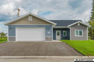 2681 Desert Eagle Loop, North Pole, AK 99705 (MLS #133676) :: Madden Real Estate