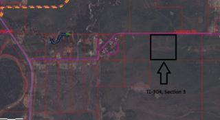 TL-304 Canaday Road, Salcha, AK 99714 (MLS #133702) :: Madden Real Estate