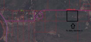 TL-303 Canaday Road, Salcha, AK 99714 (MLS #133703) :: Madden Real Estate