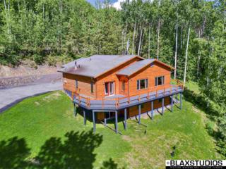 687 Aspen Heights Drive, Fairbanks, AK 99712 (MLS #133788) :: Madden Real Estate