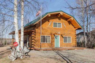 1357 Smithson Street, North Pole, AK 99705 (MLS #133791) :: Madden Real Estate