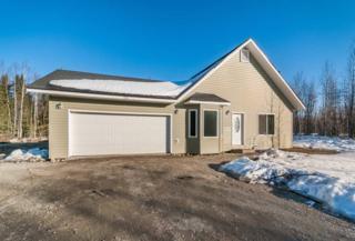 1320 Carat Loop Road, North Pole, AK 99705 (MLS #133883) :: Madden Real Estate