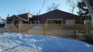 MM288.8 Parks Highway, Nenana, AK 99760 (MLS #133885) :: Madden Real Estate