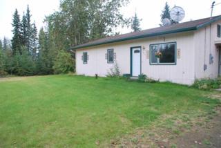 3011 Arcturus, North Pole, AK 99705 (MLS #133892) :: Madden Real Estate