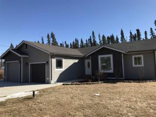 2590 Galina Street, Delta Junction, AK 99737 (MLS #133894) :: Madden Real Estate