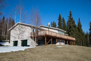 1469 Holy Cross Drive, Fairbanks, AK 99709 (MLS #133895) :: Madden Real Estate