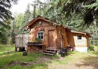 7104 Sanshore Drive, Salcha, AK 99714 (MLS #133899) :: Madden Real Estate