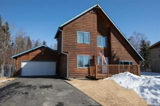 4662 Princeton Drive, Fairbanks, AK 99709 (MLS #133908) :: Madden Real Estate