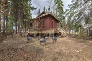 3159 Chinook Drive, Fairbanks, AK 99701 (MLS #134123) :: Madden Real Estate