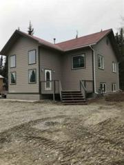 3351 Jack Warren Road, Delta Junction, AK 99737 (MLS #134133) :: Madden Real Estate