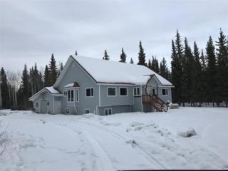 2140 Dickson Road, Delta Junction, AK 99737 (MLS #134169) :: Madden Real Estate