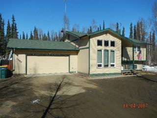 2590 Lisa Ann Drive, North Pole, AK 99705 (MLS #134190) :: Madden Real Estate