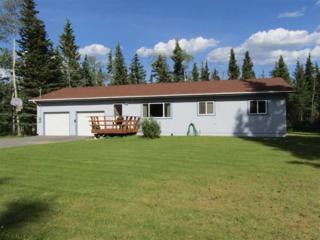 2548 Janel Avenue, Delta Junction, AK 99737 (MLS #134196) :: Madden Real Estate