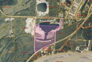1478 Chena Point Avenue, Fairbanks, AK 99709 (MLS #134206) :: Madden Real Estate