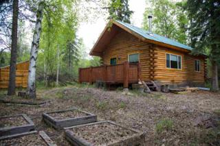 1155 Chickadee Loop, Fairbanks, AK 99712 (MLS #134230) :: Madden Real Estate