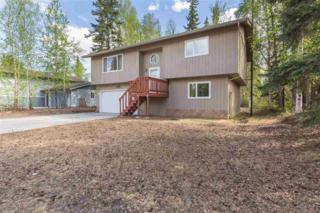 4911 Palo Verde Avenue, Fairbanks, AK 99709 (MLS #134234) :: Madden Real Estate
