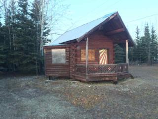 NHN Leng Road, Delta Junction, AK 99737 (MLS #133078) :: Madden Real Estate