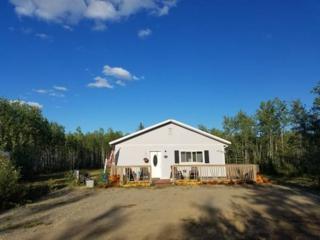 1806 W Thomas Loop Road, Delta Junction, AK 99737 (MLS #133309) :: Madden Real Estate