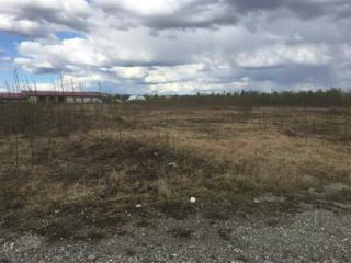 NHN Easy Street, Fairbanks, AK 99701 (MLS #133951) :: Madden Real Estate