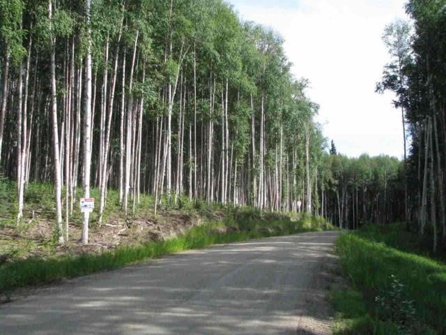 Lot 12 Block 1 Polkadot Drive, Fairbanks, AK 99712 (MLS #125292) :: Madden Real Estate
