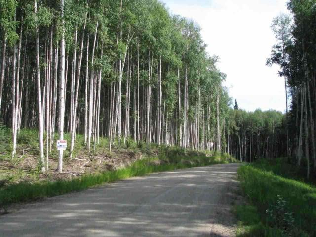 Lot 13 Polkadot Drive, Fairbanks, AK 99712 (MLS #125294) :: Madden Real Estate