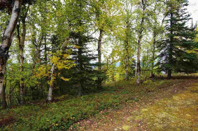 Lot 2 Ridgetop Cabins Road, Healy, AK 99743 (MLS #126474) :: Powered By Lymburner Realty