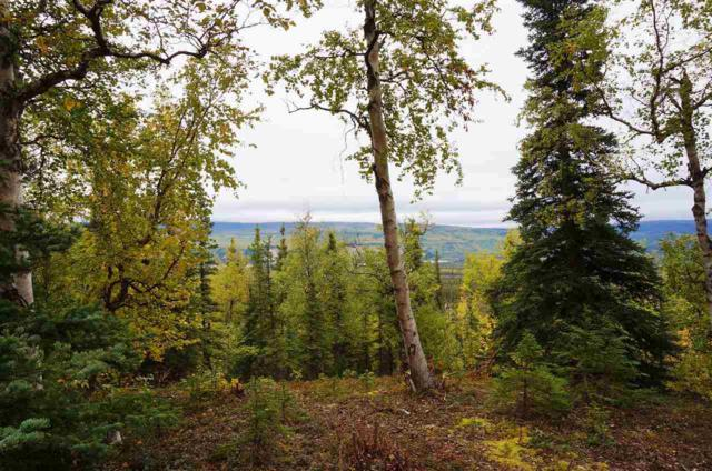 Lot 4 Ridgetop Cabins Road, Healy, AK 99743 (MLS #126476) :: Powered By Lymburner Realty