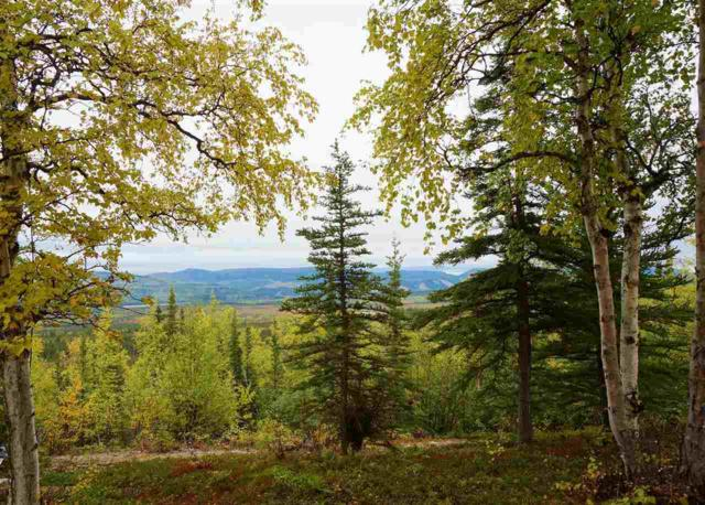 Lot 5 Ridgetop Cabins Road, Healy, AK 99743 (MLS #126477) :: Madden Real Estate
