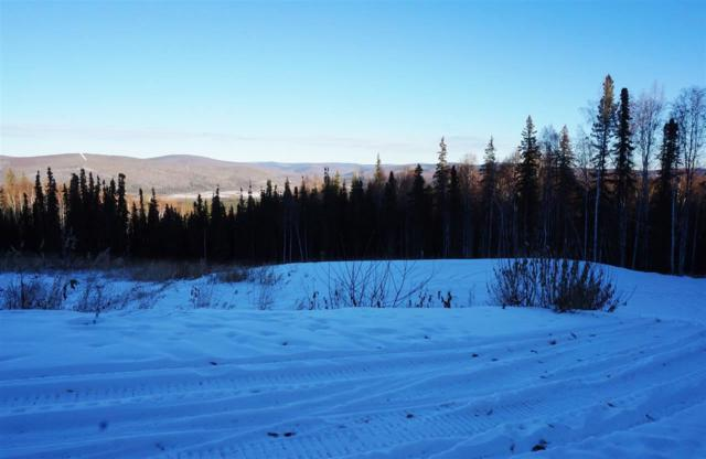 766 Fox View Road, Fairbanks, AK 99709 (MLS #126756) :: Madden Real Estate