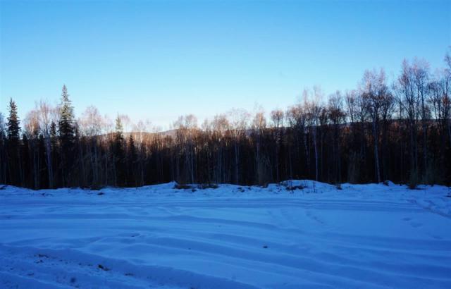 756 Fox View Road, Fairbanks, AK 99709 (MLS #126757) :: Madden Real Estate