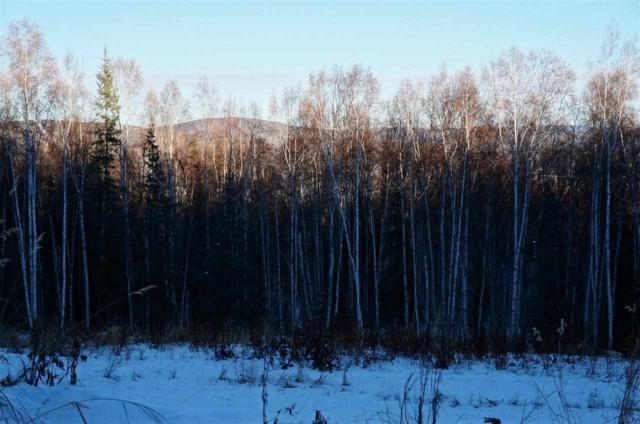 744 Fox View Road, Fairbanks, AK 99709 (MLS #126758) :: Madden Real Estate