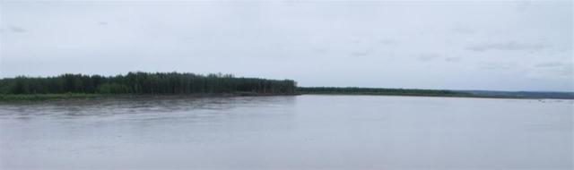 NHN Yukon River, Circle, AK 99733 (MLS #130016) :: Madden Real Estate