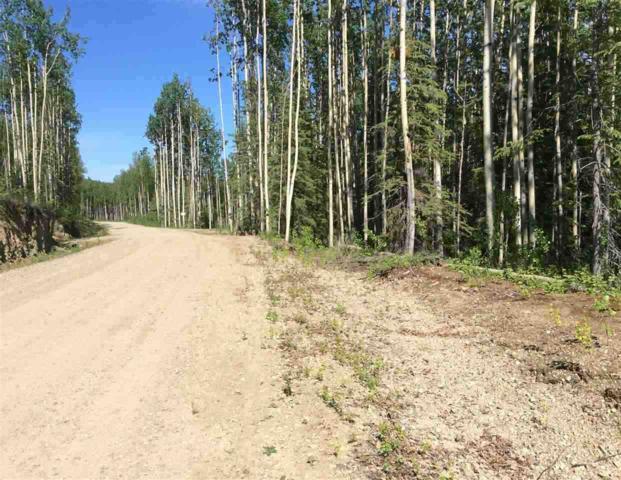 1602 Photon, Fairbanks, AK 99709 (MLS #130237) :: Madden Real Estate