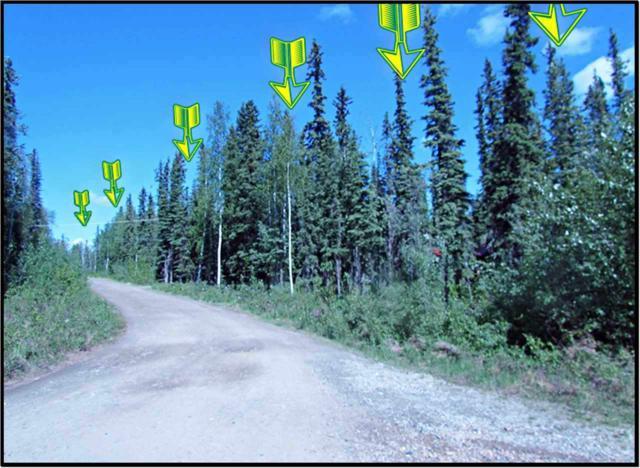 NHN Iniakuk Avenue, Fairbanks, AK 99709 (MLS #130262) :: Madden Real Estate