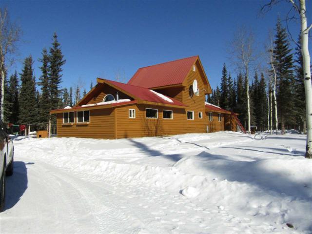 NHN W Borealis Drive, Tok, AK 99780 (MLS #130582) :: Madden Real Estate