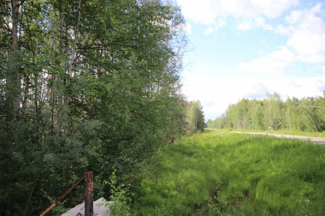 NHN Lakloey Drive, North Pole, AK 99705 (MLS #131668) :: Madden Real Estate