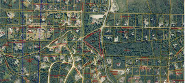 NHN Mcgrath Road, Fairbanks, AK 99712 (MLS #131945) :: Madden Real Estate
