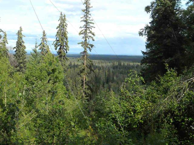 NHN Reschaven Drive, Fairbanks, AK 99709 (MLS #132036) :: Madden Real Estate