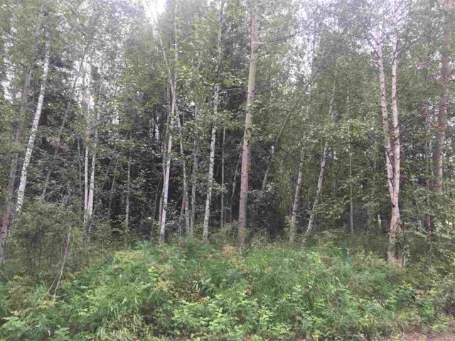 nhn Victoria Circle, North Pole, AK 99705 (MLS #132037) :: Madden Real Estate