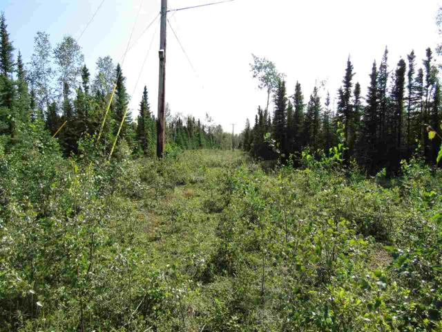 Lot 4 Tumey Road, Delta Junction, AK 99737 (MLS #132211) :: Powered By Lymburner Realty