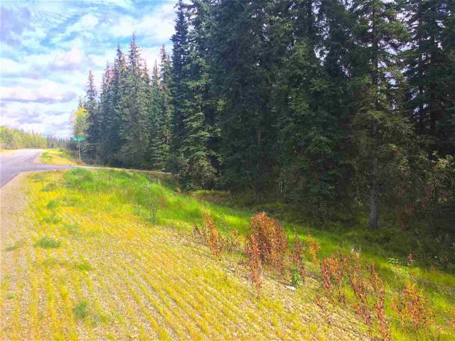 NHN Goldstream Road, Fairbanks, AK 99709 (MLS #132264) :: Madden Real Estate