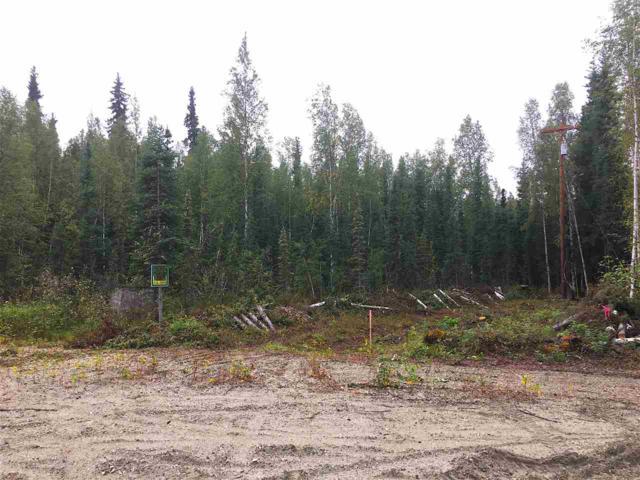 NHN Cloud Road, North Pole, AK 99705 (MLS #132275) :: Madden Real Estate