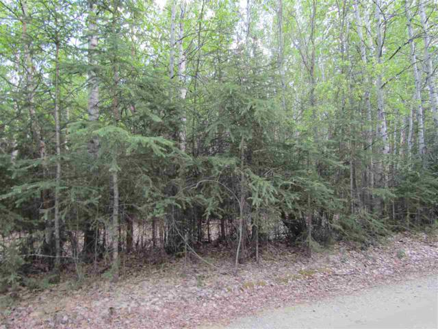NHN Rogers Ave, Delta Junction, AK 99737 (MLS #132651) :: Madden Real Estate