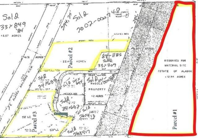Mile 310 Parks Highway, Nenana, AK 99760 (MLS #132884) :: Madden Real Estate