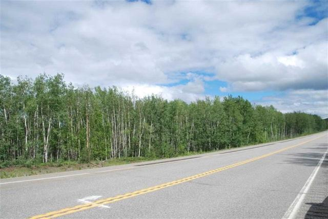 MILE 309 Parks Highway, Nenana, AK 99760 (MLS #132968) :: Madden Real Estate