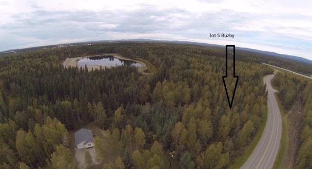 2859 Buzby Road, North Pole, AK 99705 (MLS #133120) :: Madden Real Estate