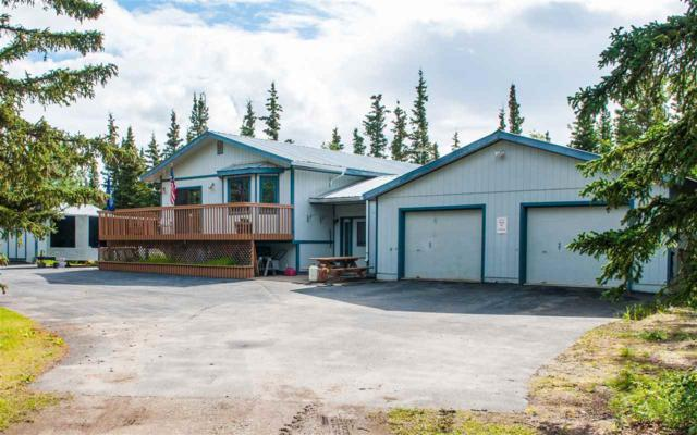 Sulfide Way, Healy, AK 99743 (MLS #133137) :: Madden Real Estate